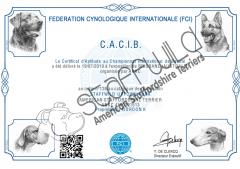 FCI International Show   19th July 2019   CACIB Award   Graded Excellent