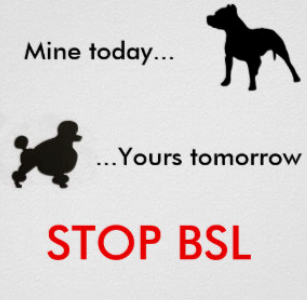 BSL5.png