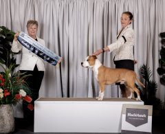 Runner Up Best In Group | 17.07.21 | Judge: Mrs Melody Darragh (QLD)